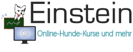 Einstein Online-Hunde-Kurse